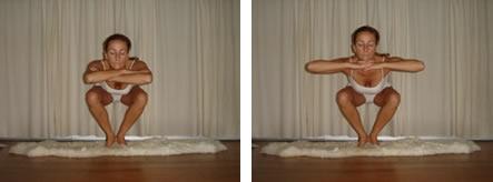 the secrets of yoga  squatting poses